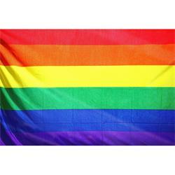 Bandera Gay 90 cm x 60 cm
