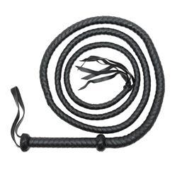 Whip 250 cm.